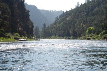 Scenic River shot of the Green River, UT. Most beautiful place I've fished.