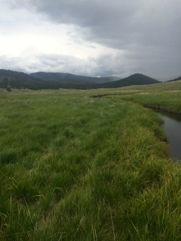 That View, Those Rain Clouds, Perfect Stream Fishing